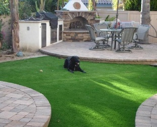 The most dog friendly lawn available