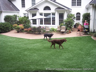 "Most dog friendly ""Fake Grass"""