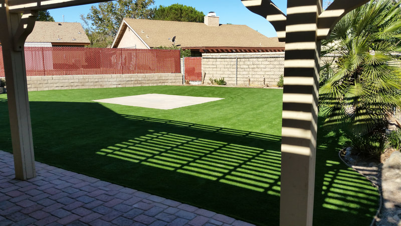 This synthetic lawn will never need to be mowed